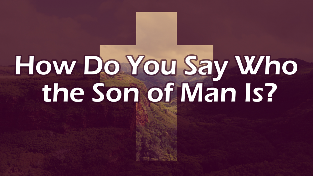 How Do You Say Who the Son of Man Is?